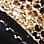 leopard print/black